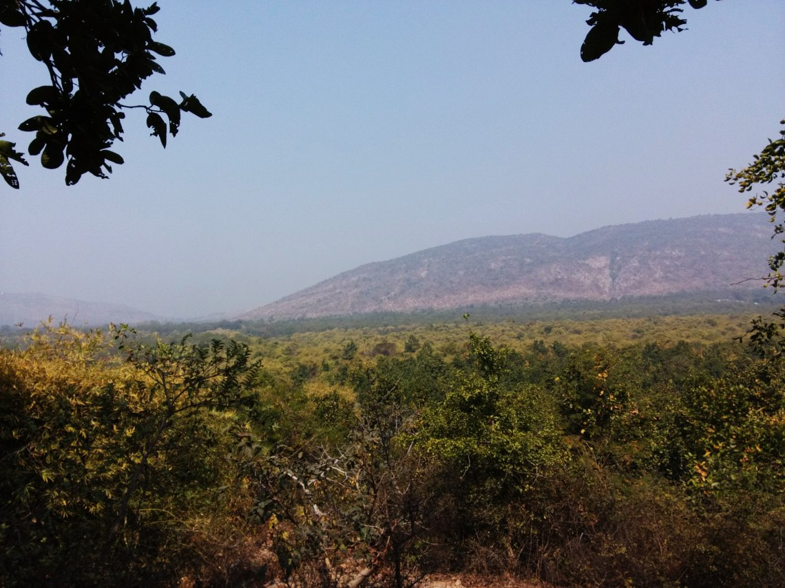 View from Udaygiri, one of the five hill ranges of Rajgir